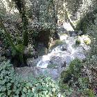 torrente-La-Furba